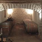 DO-Tarragona-Vins-i-Olis-Suner-Ginestar-1