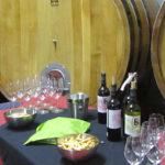 Cata-de-vinos-y-maridaje-Terra-Alta-Bernavi-Vilalba-dels-Arcs-0