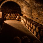Visita-bodega-Priorat-Cellers-Scala-Dei-11