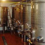 Tast-de-vins-DO-Priorat-Celler-Castellet-Porrera-enoguia-07