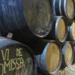 Ruta-vino-Priorat-Cellers-Scala-Dei-Enoguia-03