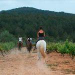 DO-Tarragona-Vinya-Janine-Rodonya-02