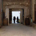 DO-Tarragona-Cellers-Blanch-bodega-puigpelat-02