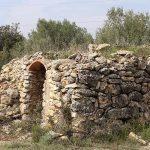 DO-Tarragona-Cellers-Blanch-bodega-puigpelat-03