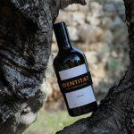identitat-olive-oil-oleoturisme-enoguia-04