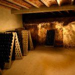 caves-olive-batllori-visita-enoturisme-02