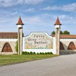 caves-olive-batllori-visita-enoturisme-04
