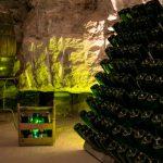 caves-olive-batllori-visita-enoturisme-08
