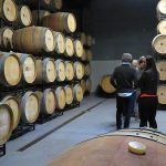 DO-Montsant-Celler-Masroig-ruta-pedra-seca-10